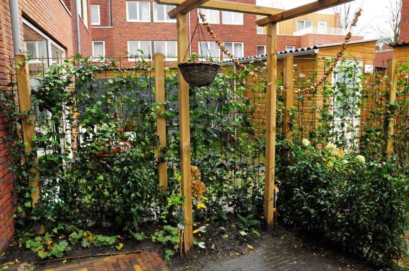 Achtertuin-in-Amsterdamse-nieuwbouwwijk-4