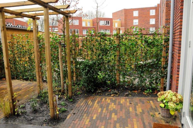 Achtertuin-in-Amsterdamse-nieuwbouwwijk-5