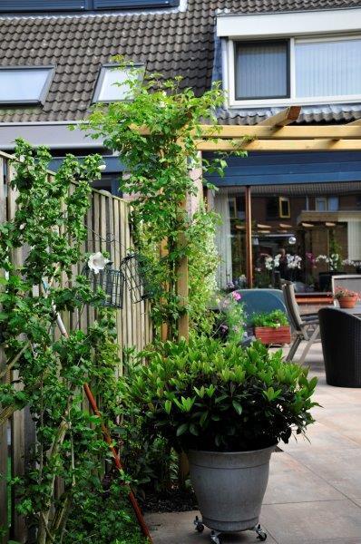 Achtertuin-met-tuinhuis-in-Oostzaan-14