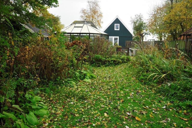 Bijvriendelijke-tuin-in-Warder-1