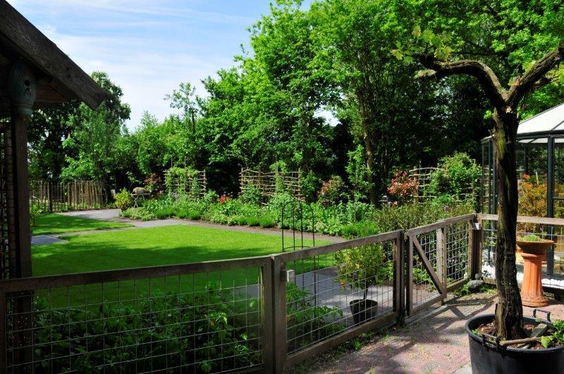 Bijvriendelijke-tuin-in-Warder-11