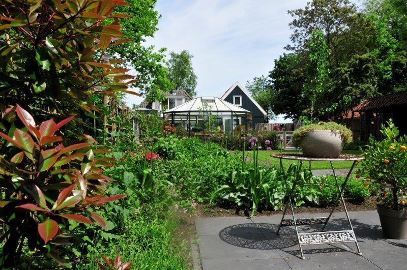 Bijvriendelijke-tuin-in-Warder-15
