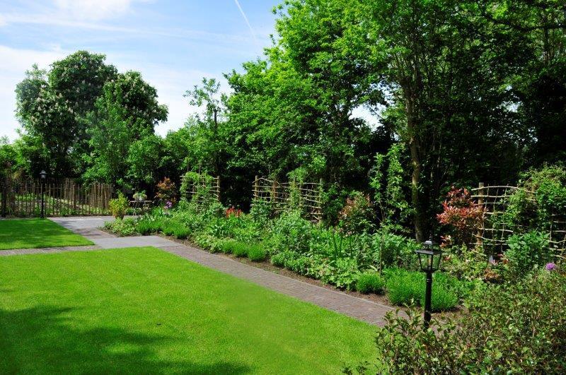 Bijvriendelijke-tuin-in-Warder-18