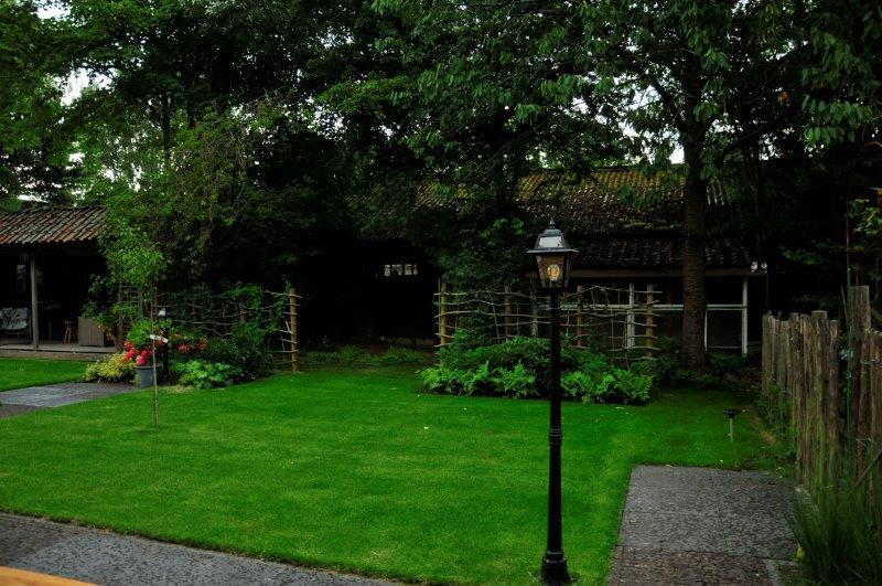 Bijvriendelijke-tuin-in-Warder-25
