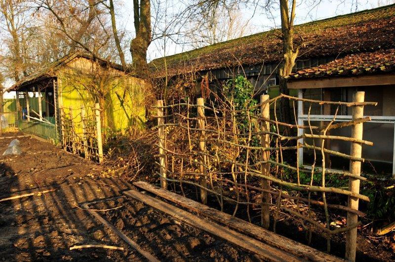 Bijvriendelijke-tuin-in-Warder-4
