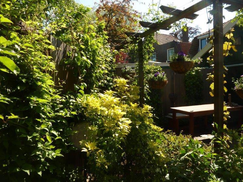 Impressie-van-diverse-tuinen-12