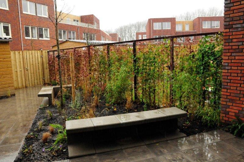 Amsterdamse-achtertuin-met-grassen-4