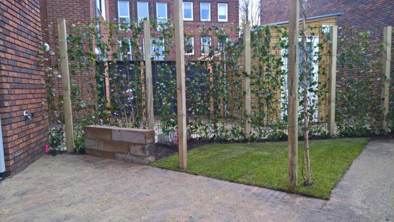 In-Amsterdam-een-achtertuin-6